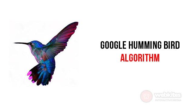 Google Humming Bird Algorithm